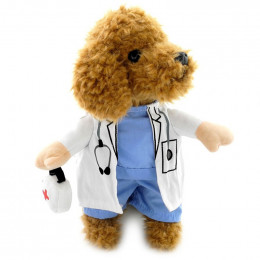 Cat Dog Doctor Costume for Halloween