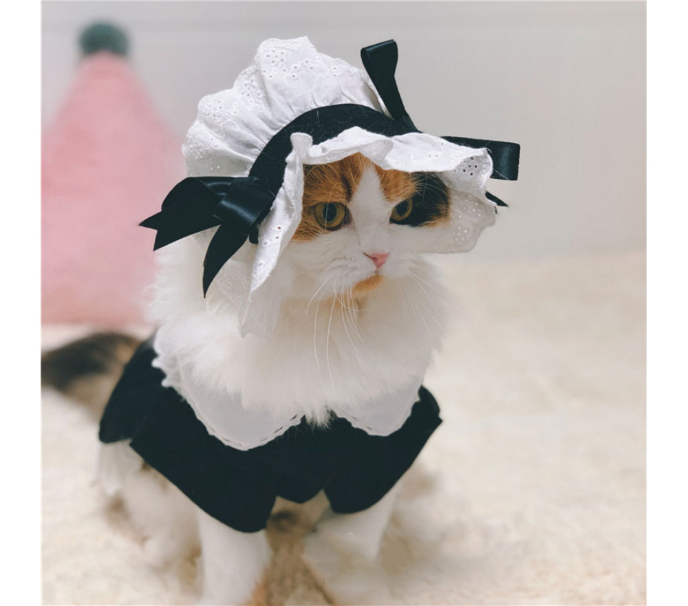 Cat Maid Outfit Halloween Pet Costume