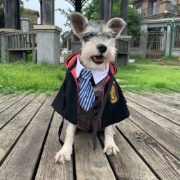 Harry Potter Dog Costume Cat Wizard Robe