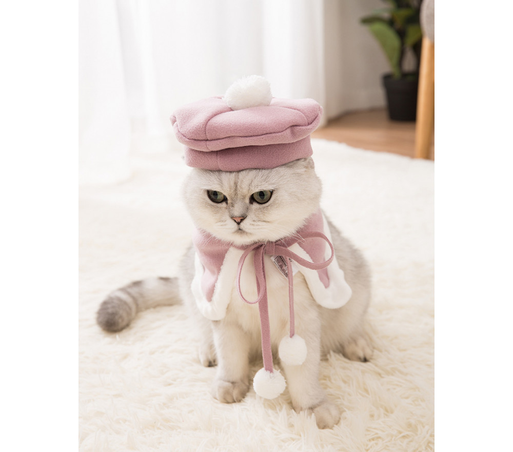 Cat Cloak Beret Cat Set Autumn and Winter Wear Thickening Pet Clothing