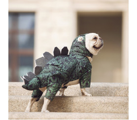 Dragon Cosplay Two-legged Costume Pet Clothing