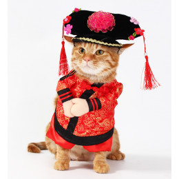 Princess Costume for Cats Chinese Traditional Clothes Qing Dynasty