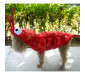 Funny Animal Dog Lobster Costumes