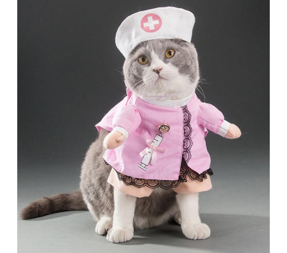 Dog Nurse Costume Cute Cat Halloween Costumes