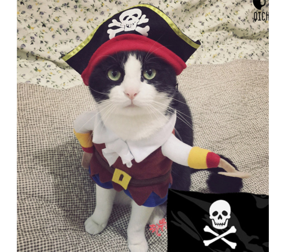 Pirate Two-legged Costume Pet Clothing