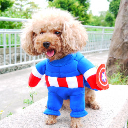 Captain America Dog Superhero Costume