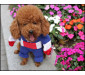 Superhero Captain Cosplay Two-legged Costume Pet Clothing