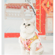 Cat Tang Suit Thick Two-legged Winter Fleece Cotton Coat
