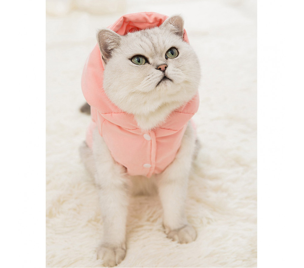 Thick Warm Cotton Vest Wool Ball Autumn and Winter Cat Clothing
