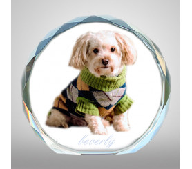 Custom 3D Picture Glass Crystal Personalized Pet Gifts For Pet Lovers