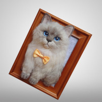 Personalized Pet Memorial Picture Frame Needle Felt Cat/Dog Portrait