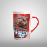 Personalized Color Changing Mug Heat Sensitive Photo Cup