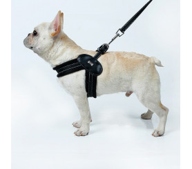 Stuffiness-free Net Cloth Harness for Small Dogs