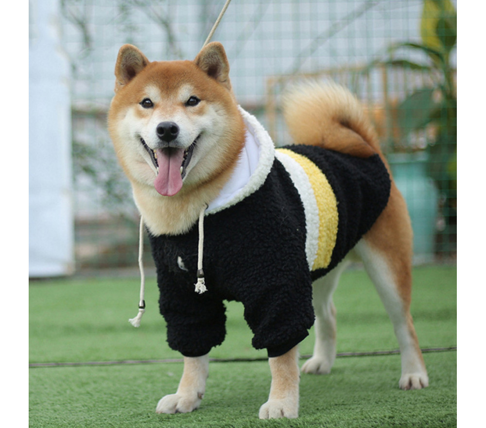 Striped Dog Winter Coat with Hood