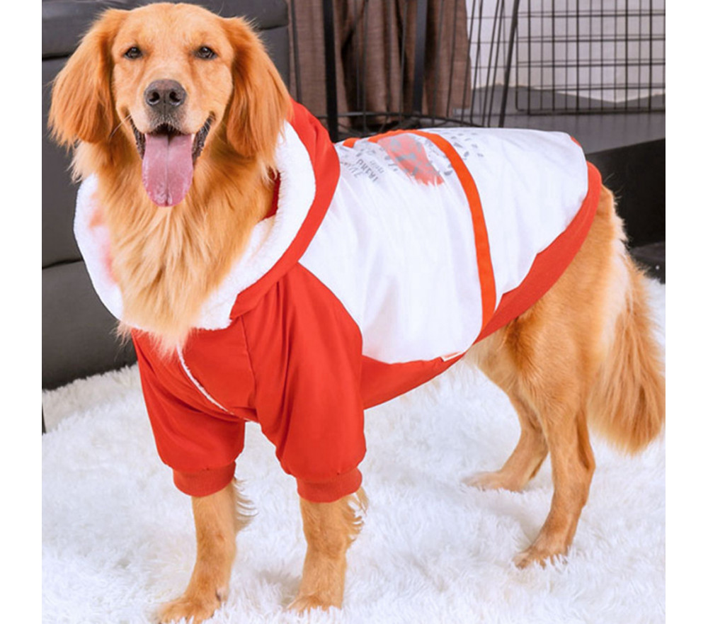 Orange Dog Coat for Winter with Hood for Large Dogs