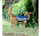 Dog Jacket Winter Waterproof Dog Coats for Large Dogs