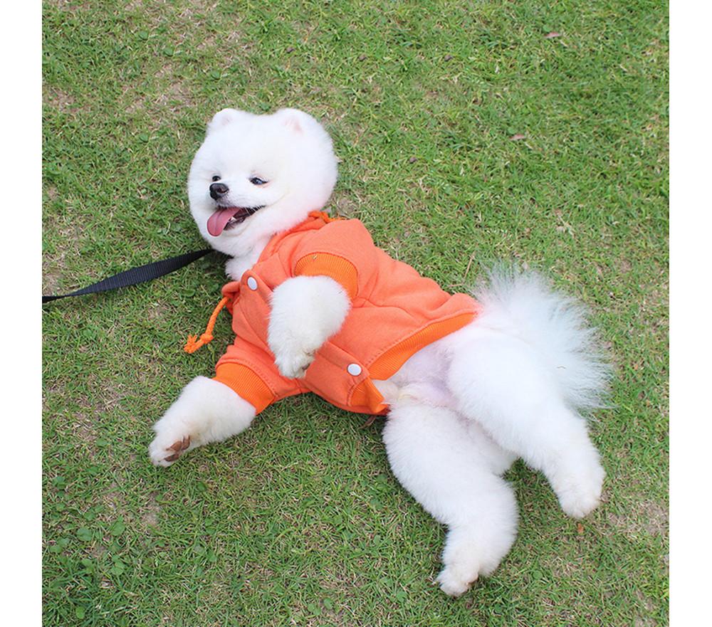 Velvet Lined Winter Dog Coats for Small Dogs