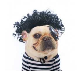 Black Short Curly Wig for Dogs