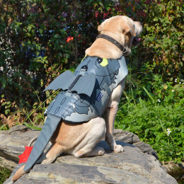 Flying Dragon Dog Life Vest