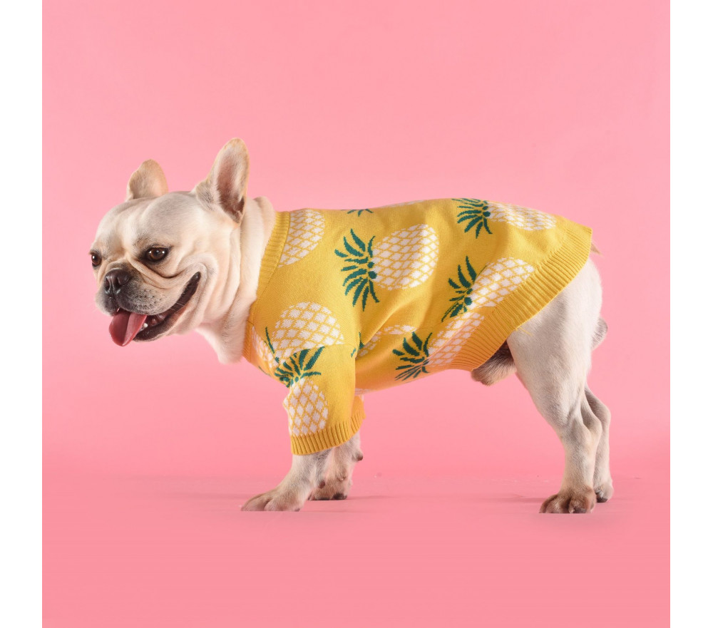 Pineapple Dog Sweaters for Small Medium Dogs