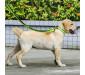 Adjustable Nylon Reflective Dog Collar Green