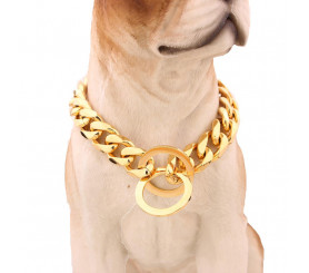 15mm Gold Chain Collar for Pitbull