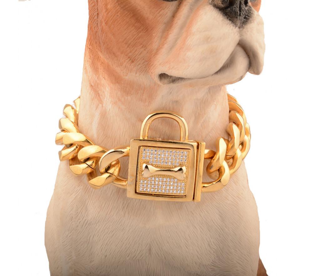 19mm French Bulldog Gold Collar
