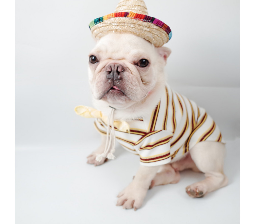 Mexican Sombrero Dog Hat