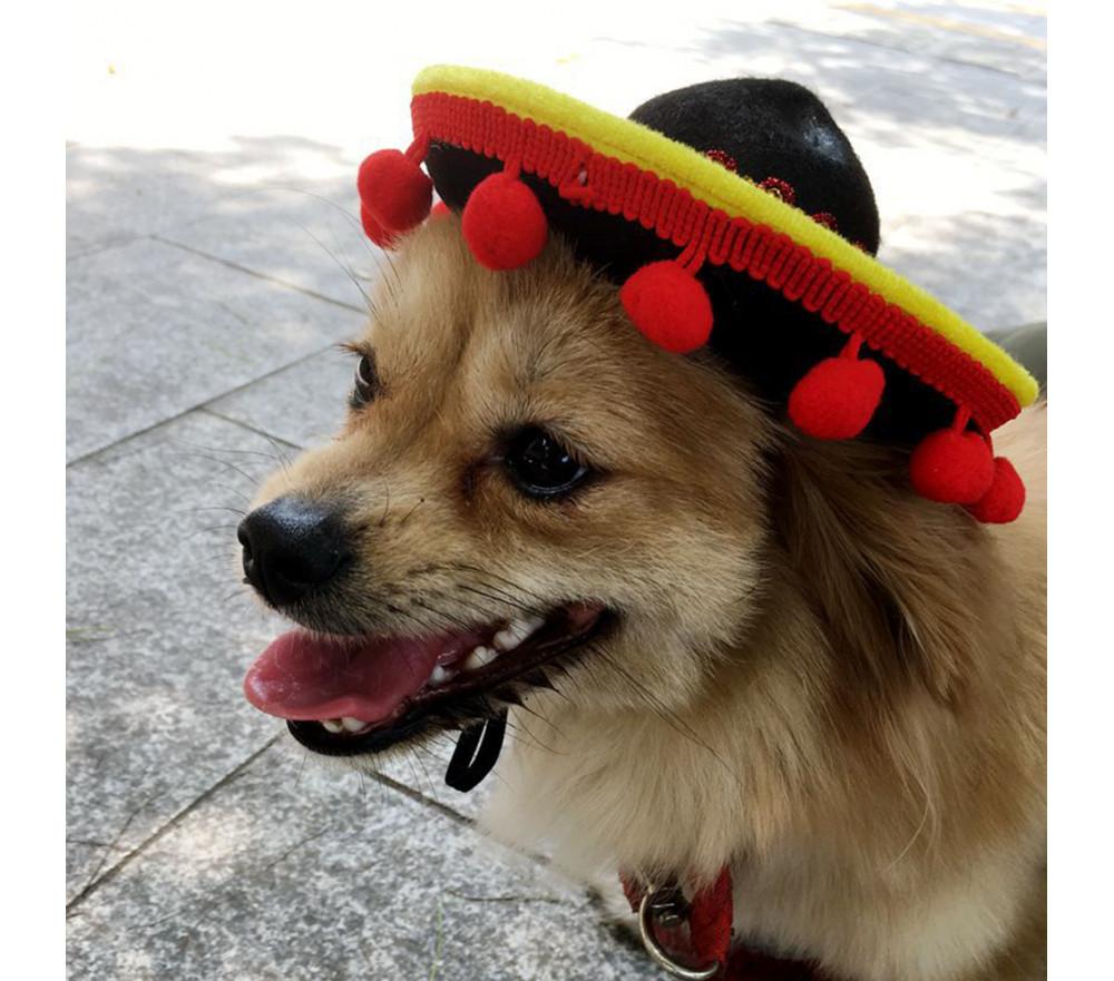 Pom Pom Sombrero Dog Hat