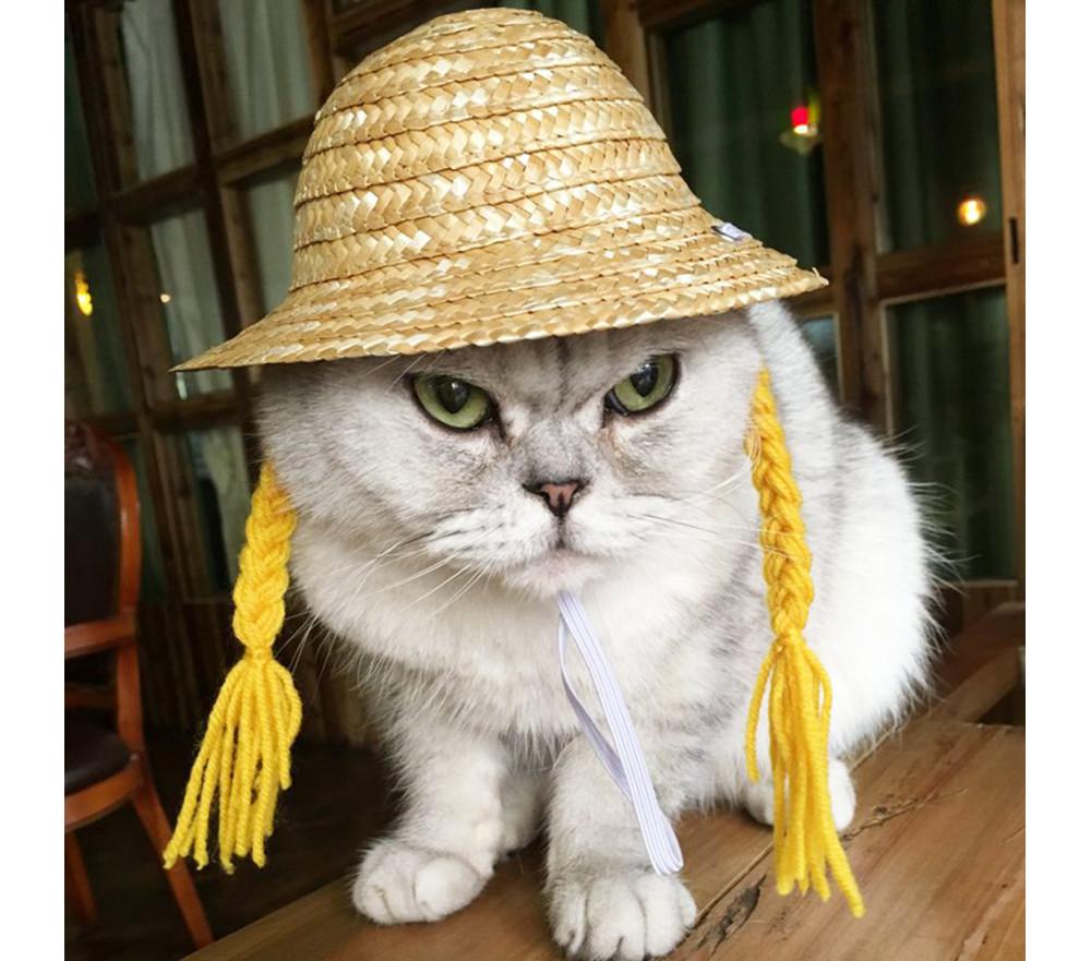 Pet Straw Hat with Braids