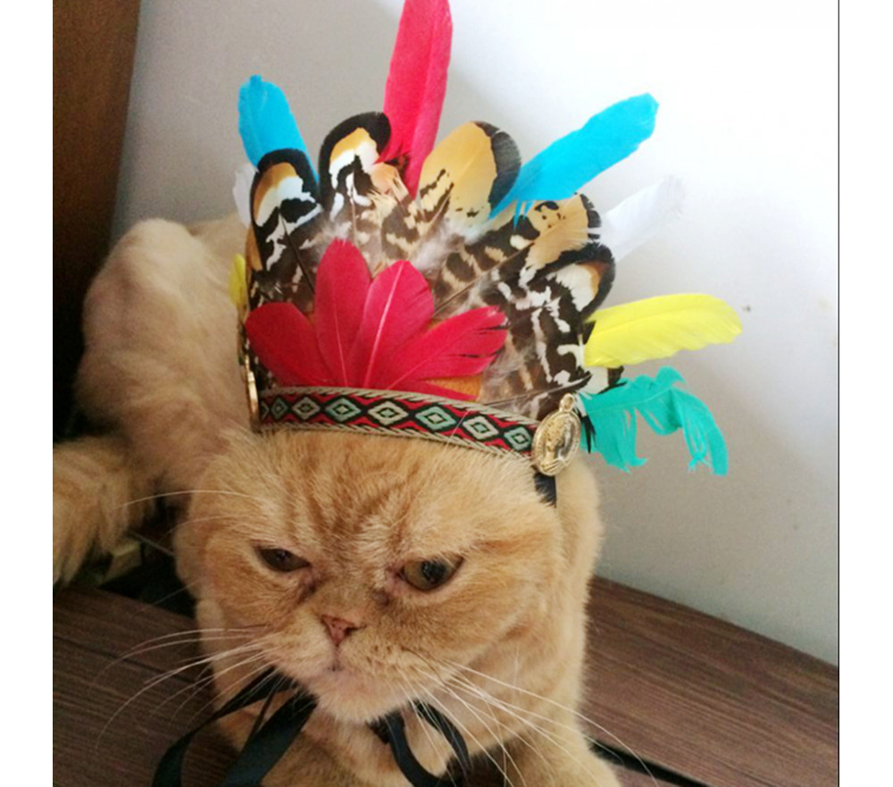 Indian Feather Hat for Pets