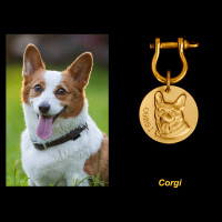 Custom Dog ID Tags Personalized Unique Engraved Dog Tags