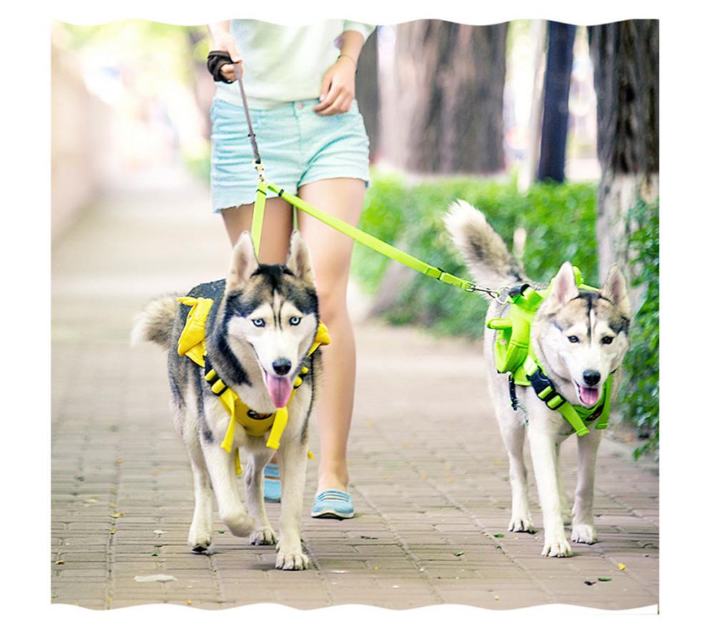 Nylon Double Dog Leashes