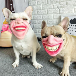 Funny Human Face Dog Mask