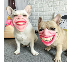 Funny Human Face Dog Mask