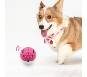 Automatic Moving Dog Ball Magic Roller Ball Toy