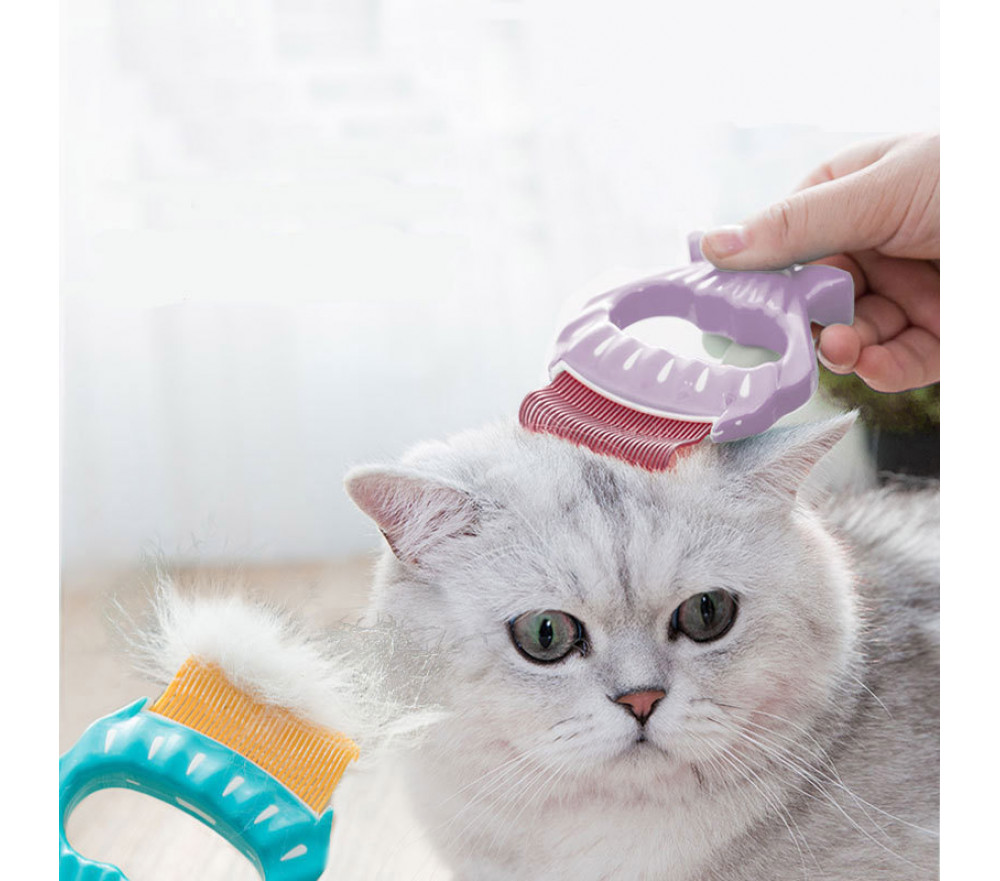 Shell Shaped Cat Hair Brush Pet Hair Remover Brush
