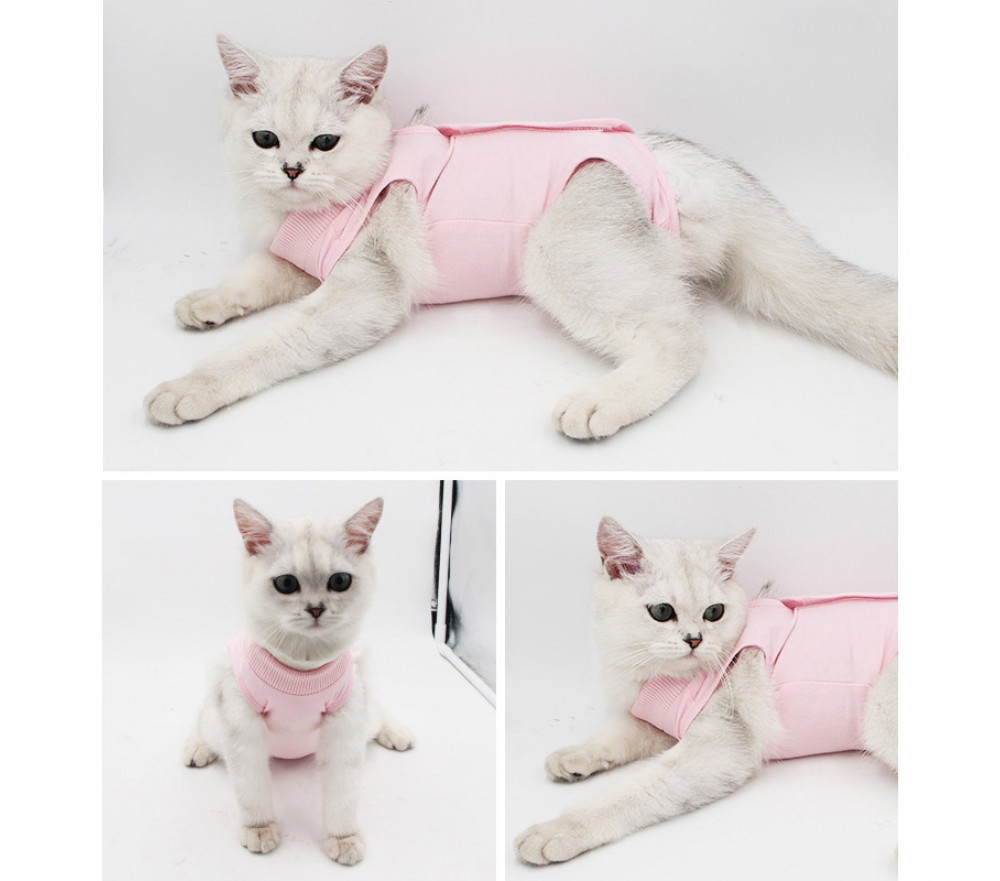 Cat Recovery Suit Female Cat Weaning Anti-licking Wear