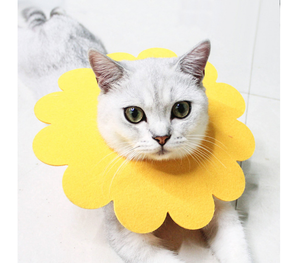 Elizabeth Circle Sunflower Saliva Towel Cat Anti-biting Anti-licking Collar