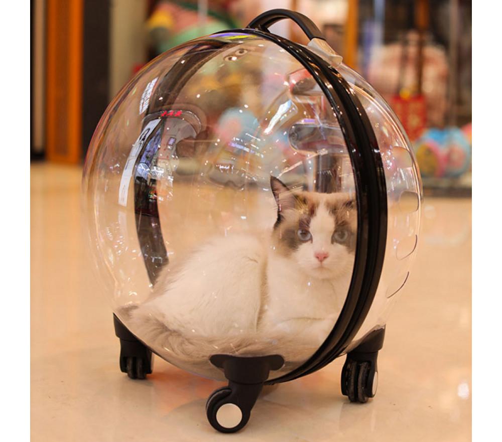 Transparent Breathable Cat Bubble Trolley Bag