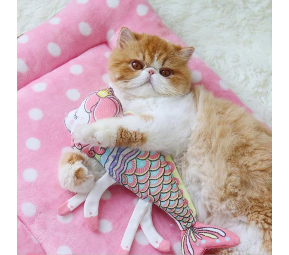 Cat Toy Cartoon Fish Shaped Cat Mint Toy Pillow