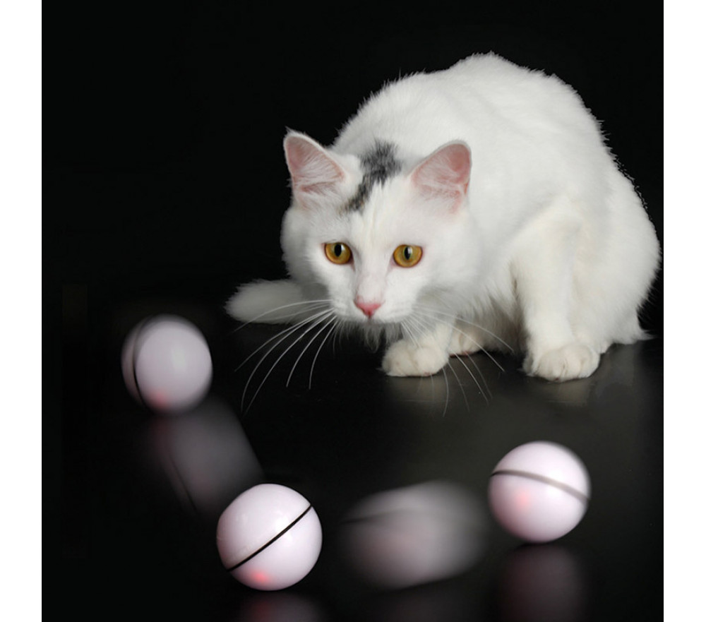 Cat Ball Toy Automatic Rolling Ball Interactive Toy Ball With LED Light