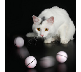 LED Light Funny Cat Ball USB Charging Smart Electric Rolling Ball