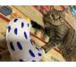 Little Chicken Catnip Cat Toy Chew Toy