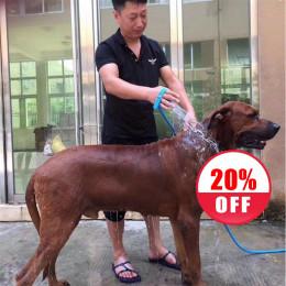 Dog Grooming Sprayer