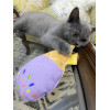 ice-cream-toy-11614670874.jpg
