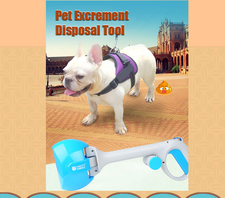 dog walking pooper scooper