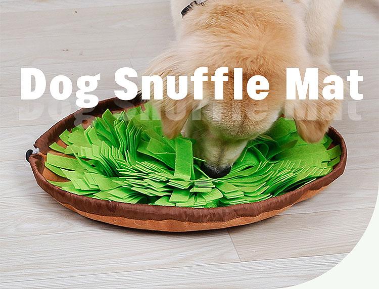 dog snuffle bowl