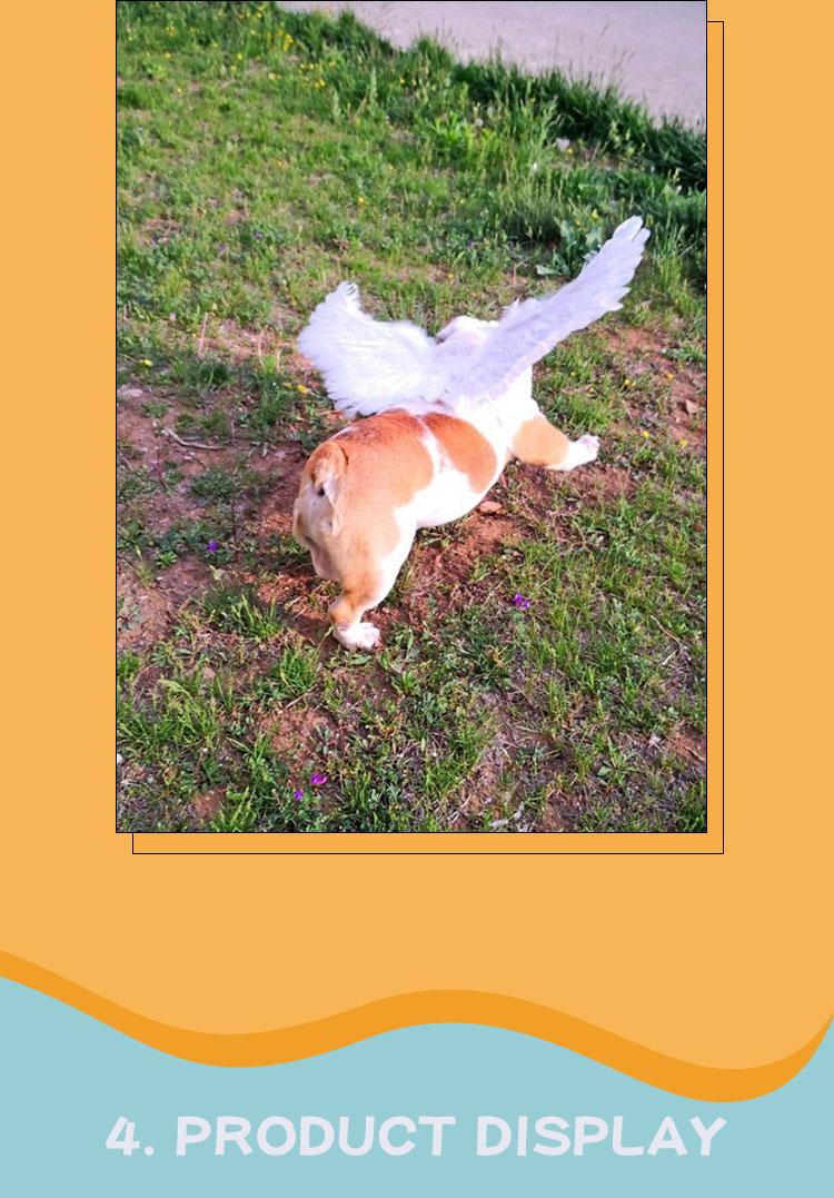 angel dog costume large