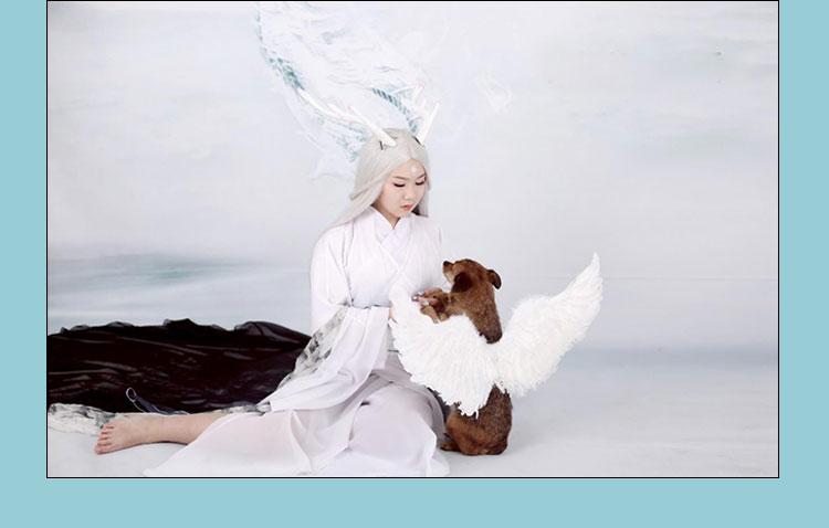 small dog angel costume